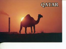 (988) Qatar Camel And Industry - Qatar