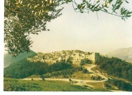 ALBANIE---ALBANIA--pamje E Kalase--berat--view Of The Castle --berat---voir 2 Scans - Albania