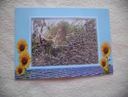 COLLECTION AUYHENTIQUE...PROVENCE...CIGALE ET LAVANDE - Fleurs, Plantes & Arbres