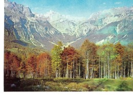 ALBANIE---ALBANIA--pamje Nga Alpet E Vertut Te Shqiperise--voir 2 Scans - Albanie