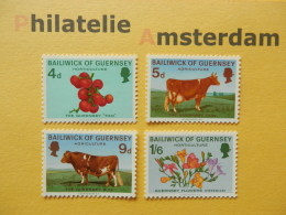 Guernsey 1970, FLORA & FAUNA / FLOWERS & ANIMALS / FLEURS & FAUNE: Mi 31-34, ** - Koeien