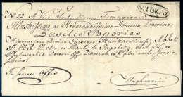 V:TOKAY Im Oval Schön Auf Faltbrief (1840) Mit Adeliger Adresse. - Stamps