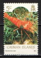 CAYMAN ISLANDS - 1990 - MARINE LIFE: RHYNCHOCINETES RIGENS - NUOVO MNH - Cayman (Isole)