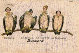 [DC9558] CPA - HUMOR - SUOCERA - L'ALLEGRA - LA CATTIVA - LA SUPERBA - LA FLEMMATICA - Viaggiata 1901 - Old Postcard - Humor
