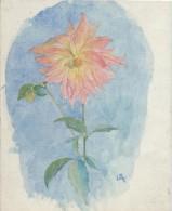 Dessin D´amateur/Aquarelle/L RACLET/Non Encadré/Fleur/ Dahlia Décoratif/ Vers 1950    GRAV161 - Watercolours