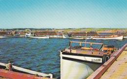 Prince Edward Island - Fishing Fleet - North Rustica - Boats - Unused - 2 Scans - Prince Edward Island