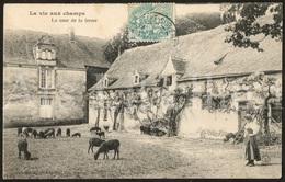 Postcard / CP / La Vie Aux Champs / La Cour De La Ferme / Héliotypie Dugas, Nantes / 1905 / 2 Scans - Folklore