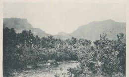 Etablissements Français De L'Océanie Tahiti/ Réf:C4582 - Tahiti