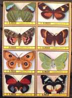 AJMAN PAPILLONS (serie 37/44). 10 Valeurs Neuves Sans Charniere. MNH - Mariposas