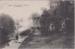 """88 VOSGES BONNEVAL    """" Ruines De L'abbaye """" Trefle N° 39 - France"""