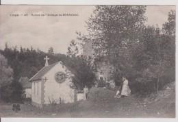 """88 VOSGES BONNEVAL    """" Ruines De L(abbaye De Bonneval """" Trefle N° 43 - Autres Communes"""