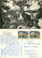 Karlovy Vary, Czech Republic RP Postcard Posted 1967 Stamp - Czech Republic
