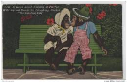 A Green Bench Romamce - Artist Drawn Illustration Of Two Chimps In Florida - Monkeys
