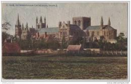 Peterborough Cathederal (unknown Artist) -  Cambridgeshire - Illustrators & Photographers