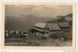 Austria - Kasberg Sepp Huber Hutte - Unclassified