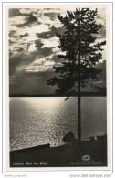Sweden - Leksand - Motiv över Siljan (Real Photo Card) - Sweden