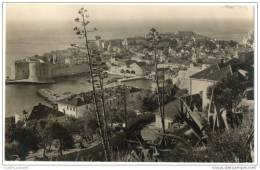 Croatia - Dubrovnik - Excellent Panorama (Real Photo Card) - Croatia