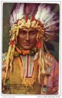 American Indian - Raphael Tuck Hiawatha Series - Native Americans