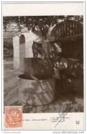 Camile Boiry - Le Vin - Wine - Der Wein (1910) Wine Production - Vinyard - Professions