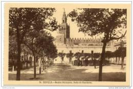 Sevilla - Reales Alcazares - Patio De Banderas - Sevilla