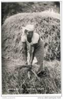 Ceylon (Sri Lanka) - Native Singhalese Girl Gleaning - Sri Lanka (Ceylon)