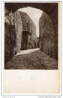 Italy - Goriza Entrata Al Castello - Gorizia