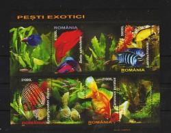 2005 - Poissons Exotiques Mi Bloc 351 Et Yv 285 MNH - Blocks & Kleinbögen