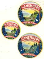 3 étiquettes Différentes  CAMEMBERT  Fabriqué Dans Les VOSGES -FROMAGERIE GERARD à THOLY -1 SURCHARGEE/IMP. DELCEY DOLE - Formaggio