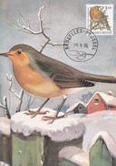 CM  - André BUZIN - TIMBRE N° 2223 - Rouge-gorge / Roodborst - Oiseau Protégé Par La Loi - 1985-.. Oiseaux (Buzin)