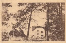 Baillonville  ;la Haie Du Cerf - Somme-Leuze