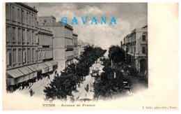 TUNISIE - TUNIS - Avenue De France   (Recto/Verso) - Tunesië