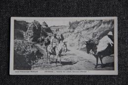 ABYSSINIE - Route Du CHOA ( Environs D'Harrar ). - Ethiopie
