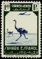 Sahara 079 (*) Fauna. Avestruz. Sin Goma - Sahara Espagnol