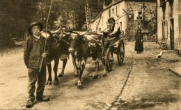 CPA - L'Auvergne Historique Et Pittoresque -  En Route Pour La Fenaison - - Auvergne