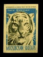 Zoo Tiger Beast Fauna Tigre Tier Matchbox Labels Phillumeny - Matchbox Labels