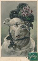 CHIENS - DOG - Jolie Carte Fantaisie Viennoise Chien Humanisé Avec Chapeau - H. CHRIST - VIENNE N° 191 - Hunde