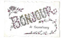 LUXEMBOURG Carte Fantaisie Bonjour De - Luxemburg - Stad