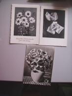 Bloemen Fleurs Flowers Blumen 3 Cartes - Bloemen