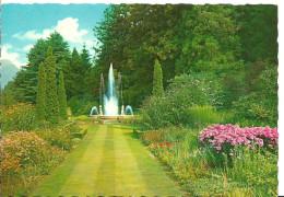 Verbania Pallanza (Piemonte) Lago Maggiore, Villa Taranto, Giardini Botanici, Bordure Di Piante Erbacee - Verbania