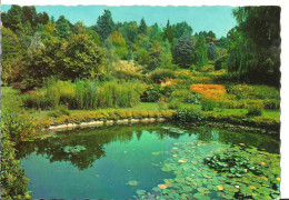 Verbania Pallanza (Piemonte) Lago Maggiore, Villa Taranto, Giardini Botanici, Giardino Palustre - Verbania