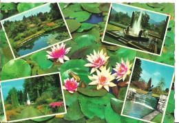 Verbania Pallanza (Piemonte) Lago Maggiore, Villa Taranto, Giardini Botanici, Vedute - Verbania