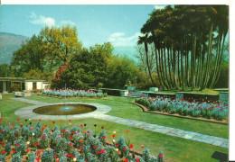 Verbania Pallanza (Piemonte) Lago Maggiore, Villa Taranto, Giardini Botanici, Giardini Terrazzati - Verbania