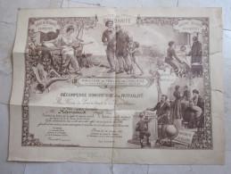 DIPLOME MINISTERE TRAVAIL HYGIENE ET ASSISTANCE SOCIALE RECOMPENSE MUTUALITE 1929 - Diplômes & Bulletins Scolaires