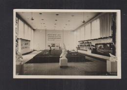 Dt. Reich AK Internationale Jagd Ausstellung Berlin 1937 - Exhibitions
