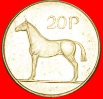 § HORSE: IRELAND ★ 20 PENCE 1998! LOW START ★ NO RESERVE! - Irlande