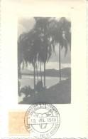 IX EXPOS. NAC. DE ANIMAIS SAO PAULO BRASIL JULIO 1940 SPECIAL COVER OVER POSTCARD - Veeteelt