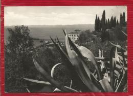 Italie - Lago Di Garda - S. Vigilio - Italia