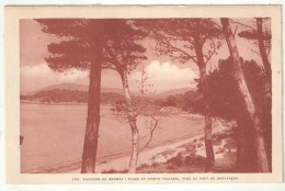 83 - Environs De BORMES - Plage Et Pointe Vignasse, Près Du Fort De Brégançon - Bar 1770 - Bormes-les-Mimosas