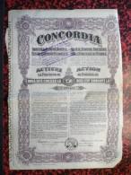 Concordia Action De 250 Lei 31 Aout 1921 - Shareholdings