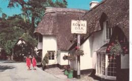 WINSFORD - TRHE ROYAL OAK - England